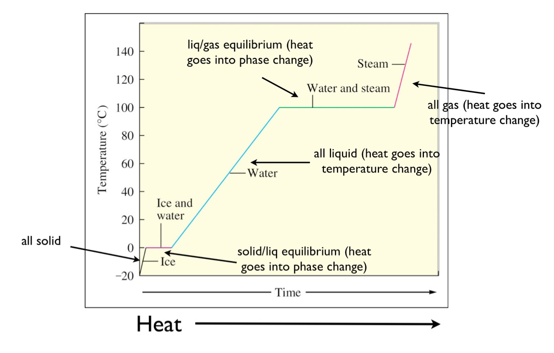 Heating Curve Of Water Worksheet - Sharebrowse